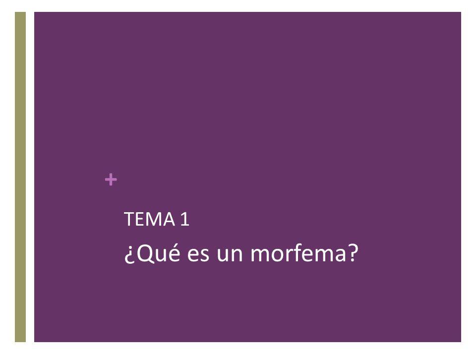 TEMA 1 ¿Qué es un morfema