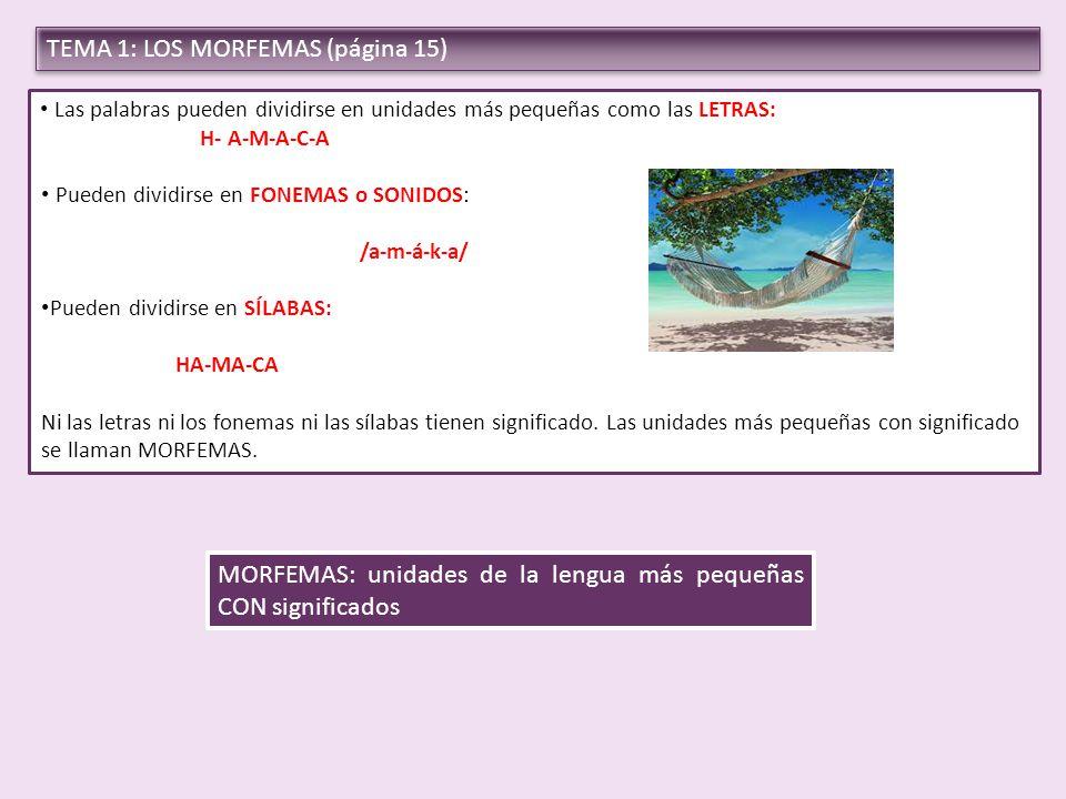 TEMA 1: LOS MORFEMAS (página 15)
