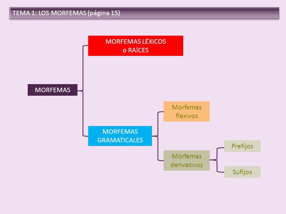 MORFEMAS GRAMATICALES