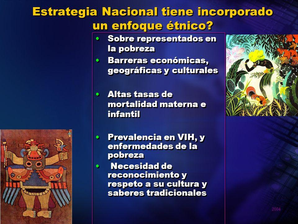 Estrategia Nacional tiene incorporado un enfoque étnico