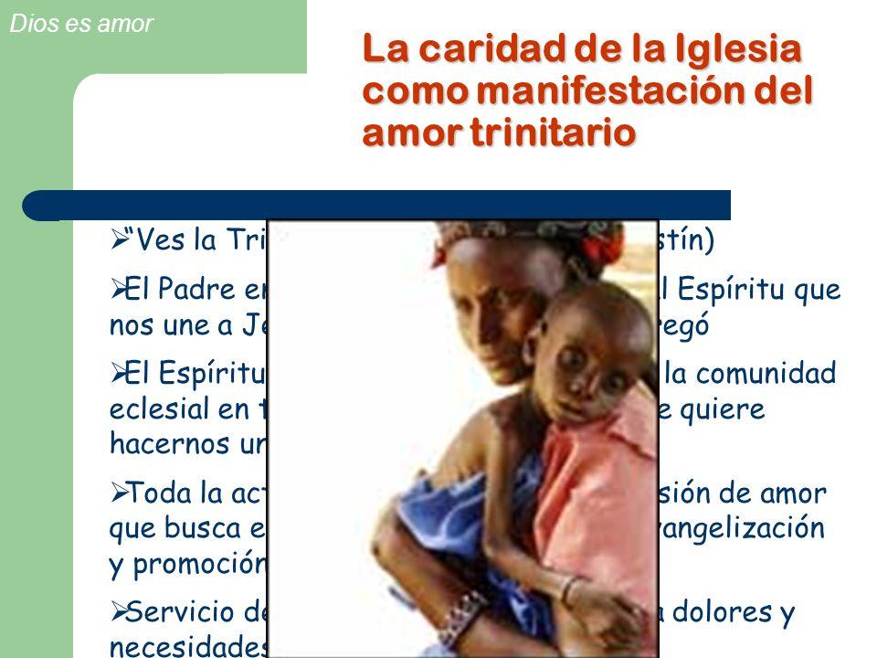 La caridad de la Iglesia como manifestación del amor trinitario