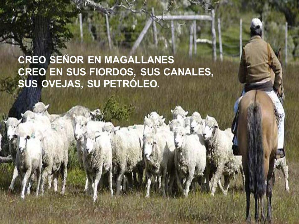CREO SEÑOR EN MAGALLANES