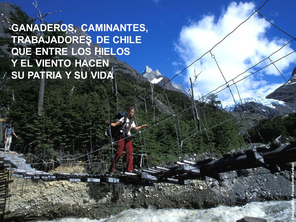 GANADEROS, CAMINANTES, TRABAJADORES DE CHILE. QUE ENTRE LOS HIELOS.