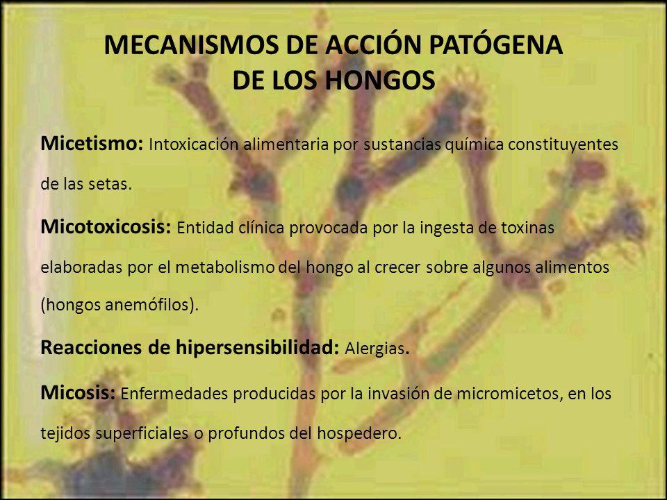 MECANISMOS DE ACCIÓN PATÓGENA DE LOS HONGOS