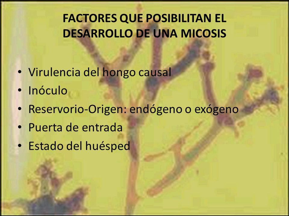 FACTORES QUE POSIBILITAN EL DESARROLLO DE UNA MICOSIS
