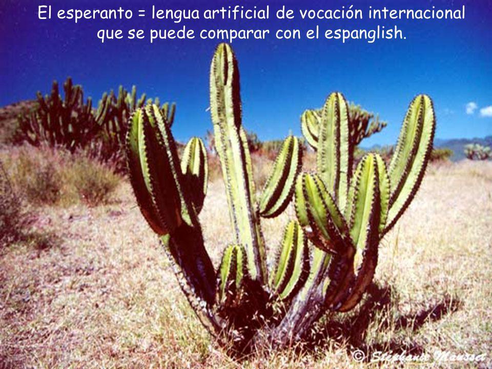 El esperanto = lengua artificial de vocación internacional que se puede comparar con el espanglish.