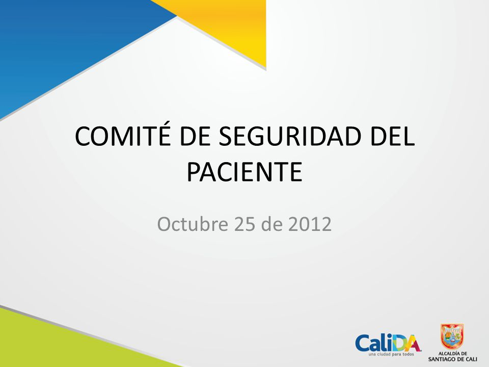 COMITÉ DE SEGURIDAD DEL PACIENTE