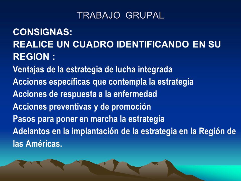 TRABAJO GRUPAL CONSIGNAS: REALICE UN CUADRO IDENTIFICANDO EN SU. REGION : Ventajas de la estrategia de lucha integrada.