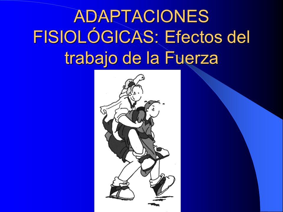 ADAPTACIONES FISIOLÓGICAS: Efectos del trabajo de la Fuerza