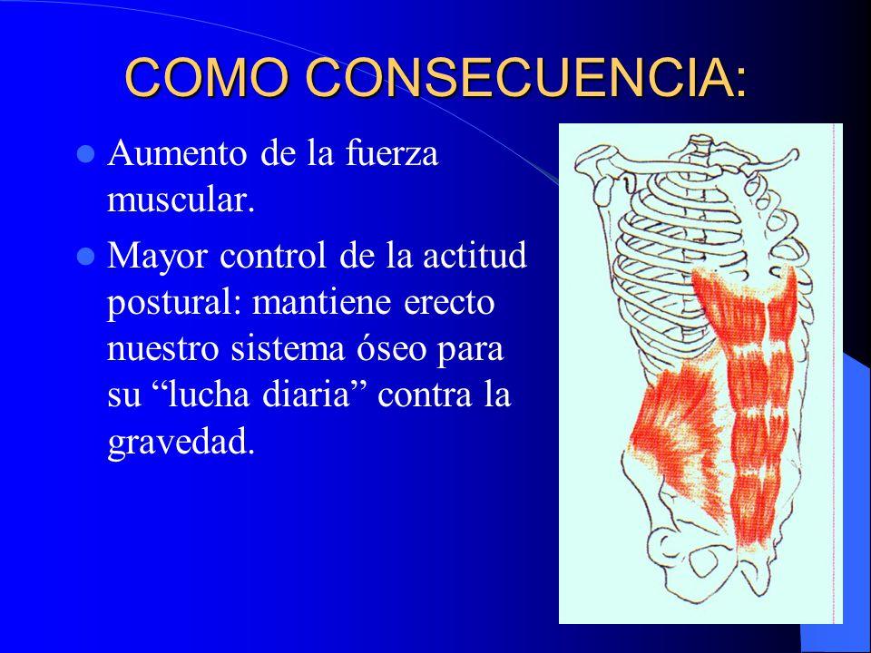 COMO CONSECUENCIA: Aumento de la fuerza muscular.