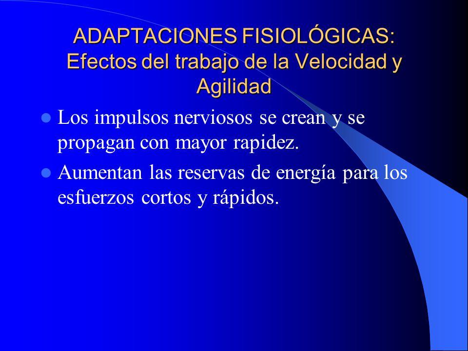 ADAPTACIONES FISIOLÓGICAS: Efectos del trabajo de la Velocidad y Agilidad