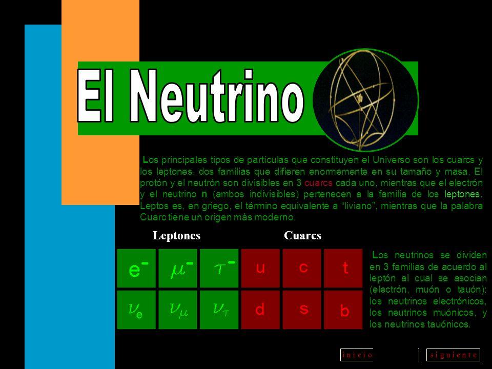 El Neutrino Leptones Cuarcs