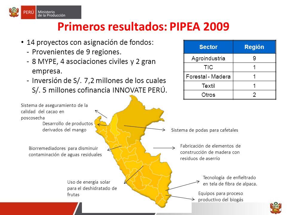 Primeros resultados: PIPEA 2009