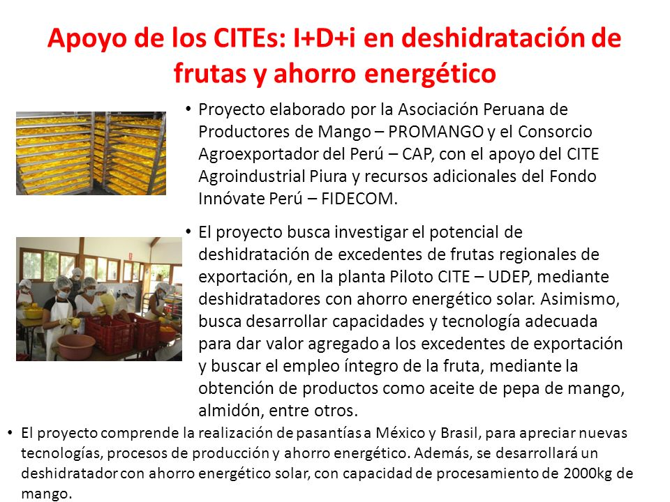 Apoyo de los CITEs: I+D+i en deshidratación de frutas y ahorro energético