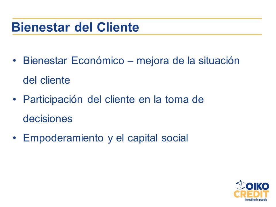 Bienestar del Cliente Bienestar Económico – mejora de la situación del cliente. Participación del cliente en la toma de decisiones.