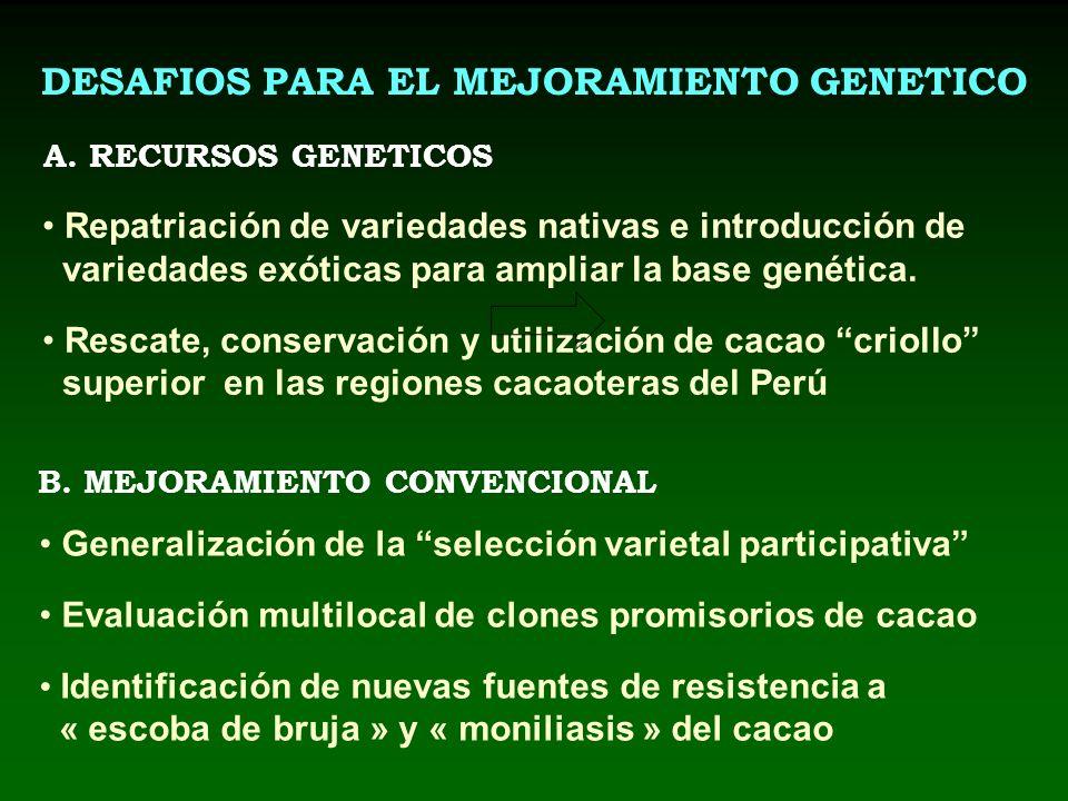 DESAFIOS PARA EL MEJORAMIENTO GENETICO B. MEJORAMIENTO CONVENCIONAL