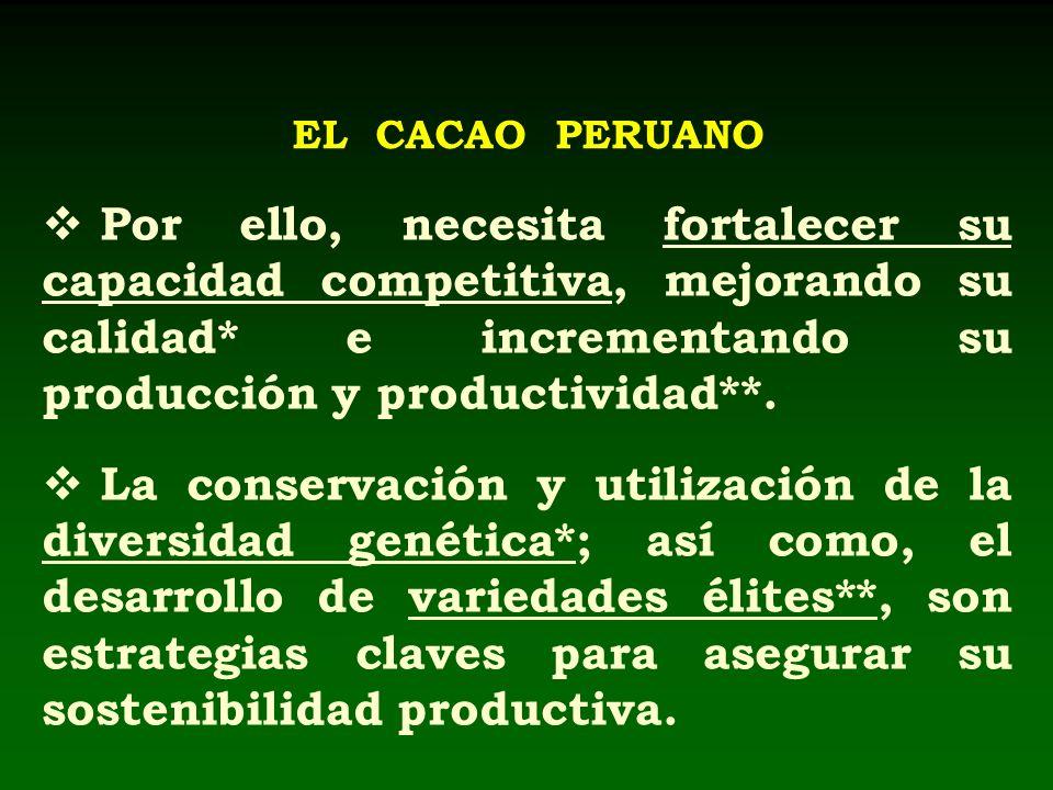 EL CACAO PERUANO Por ello, necesita fortalecer su capacidad competitiva, mejorando su calidad* e incrementando su producción y productividad**.