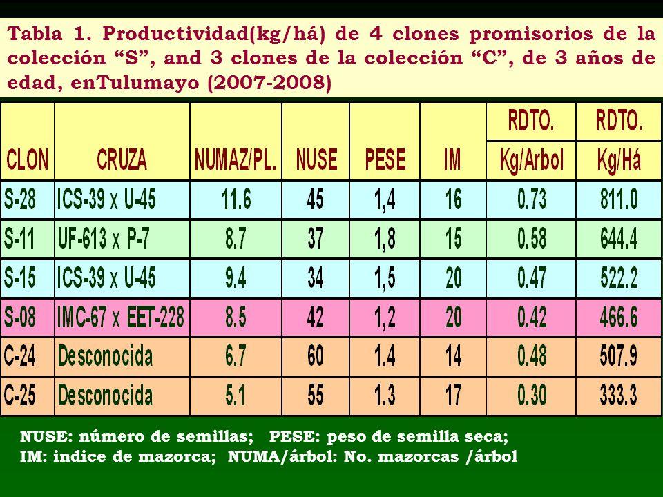 Tabla 1. Productividad(kg/há) de 4 clones promisorios de la colección S , and 3 clones de la colección C , de 3 años de edad, enTulumayo (2007-2008)