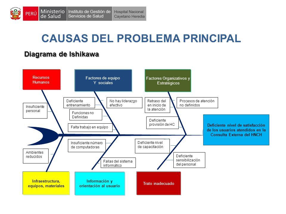 CAUSAS DEL PROBLEMA PRINCIPAL