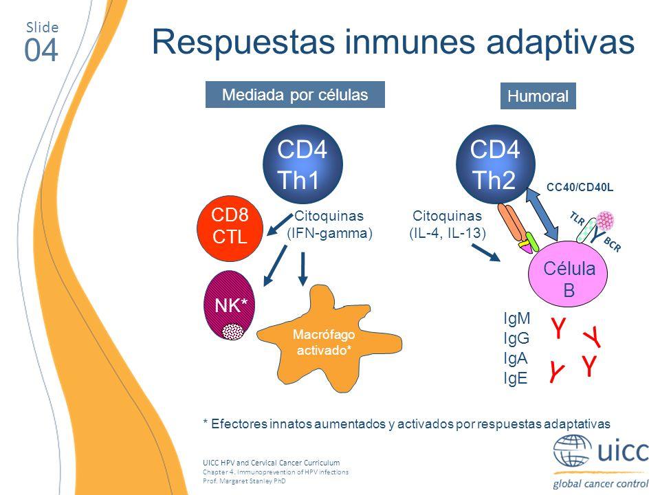 Respuestas inmunes adaptivas
