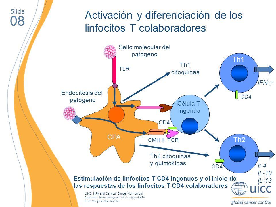 Sello molecular del patógeno