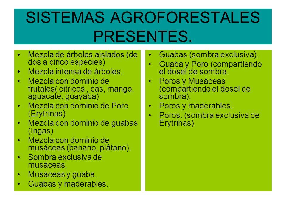 SISTEMAS AGROFORESTALES PRESENTES.