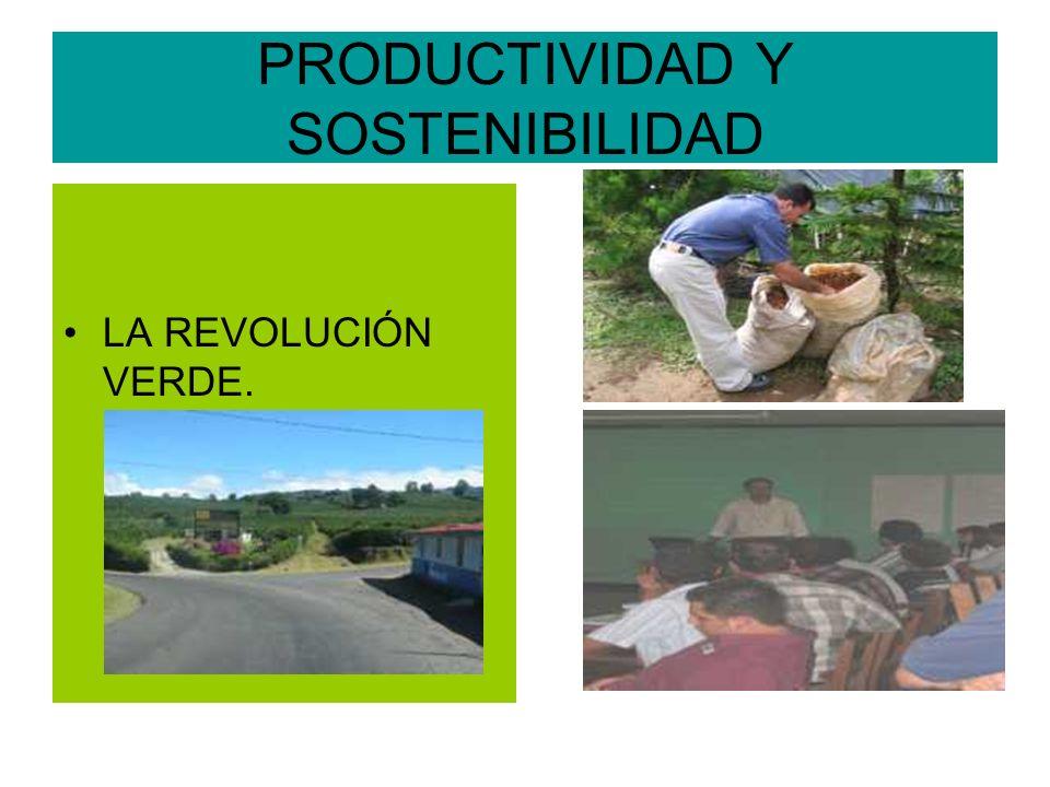 PRODUCTIVIDAD Y SOSTENIBILIDAD