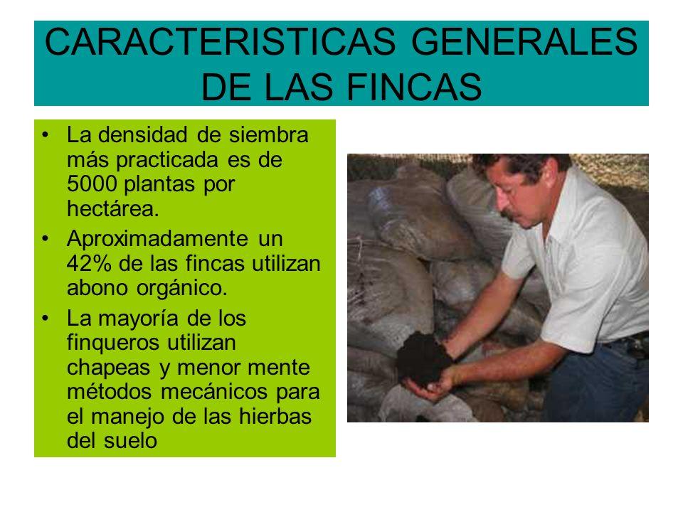 CARACTERISTICAS GENERALES DE LAS FINCAS