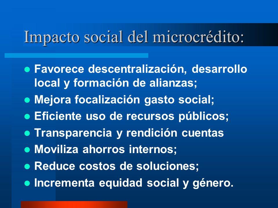 Impacto social del microcrédito: