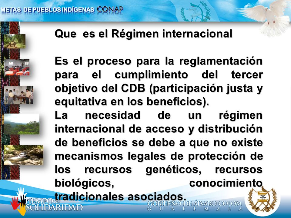 Que es el Régimen internacional