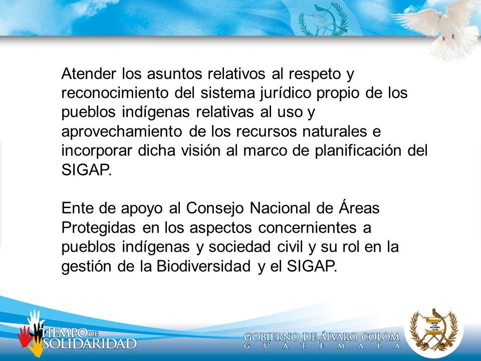 Atender los asuntos relativos al respeto y reconocimiento del sistema jurídico propio de los pueblos indígenas relativas al uso y aprovechamiento de los recursos naturales e incorporar dicha visión al marco de planificación del SIGAP.