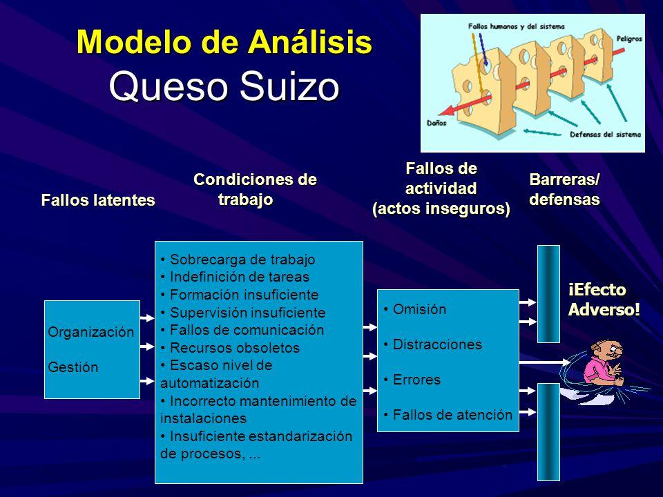 Modelo de Análisis Queso Suizo