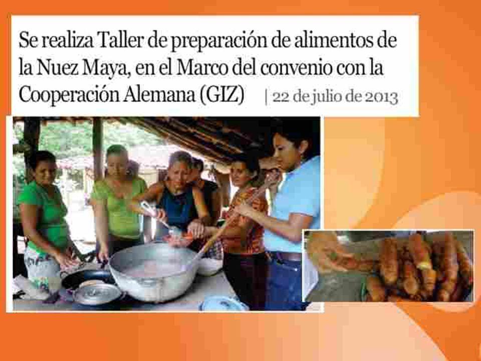 Vivienda segura Familia de Nora Aguilera y Maximiliano Lezama Antes
