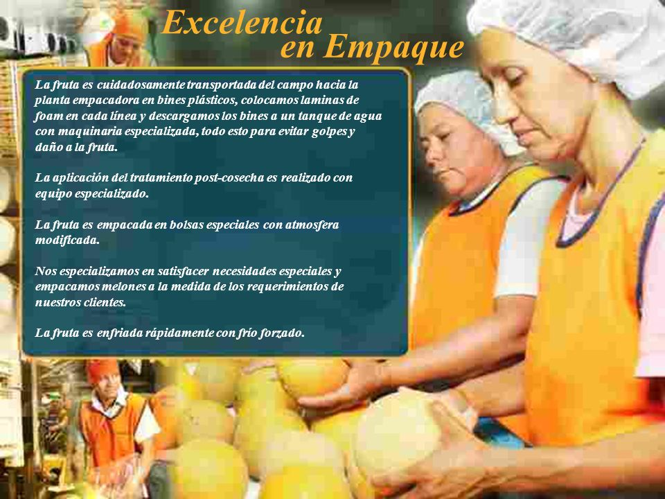 Excelencia en Empaque.