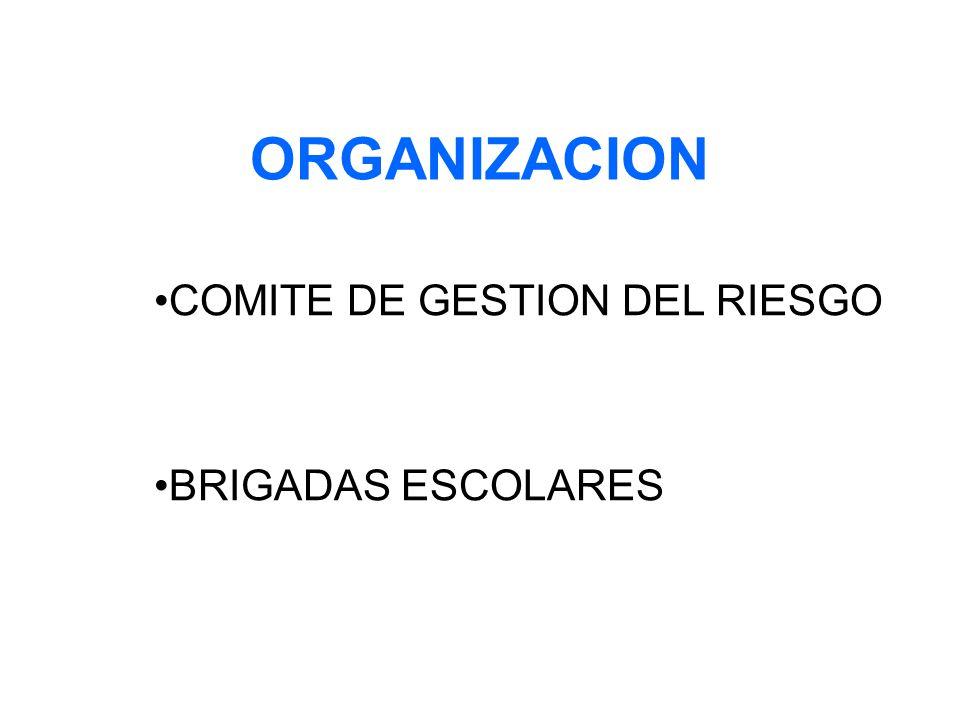 COMITE DE GESTION DEL RIESGO BRIGADAS ESCOLARES