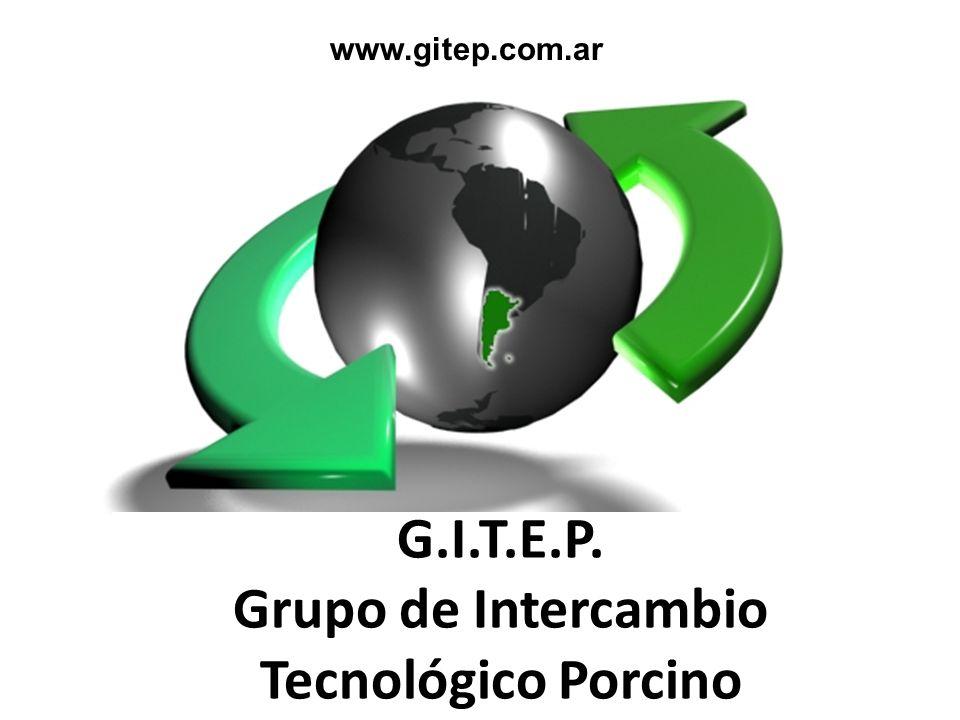 G.I.T.E.P. Grupo de Intercambio Tecnológico Porcino