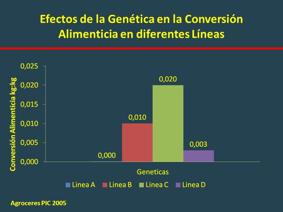 Efectos de la Genética en la Conversión Alimenticia en diferentes Líneas