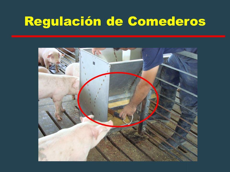 Regulación de Comederos