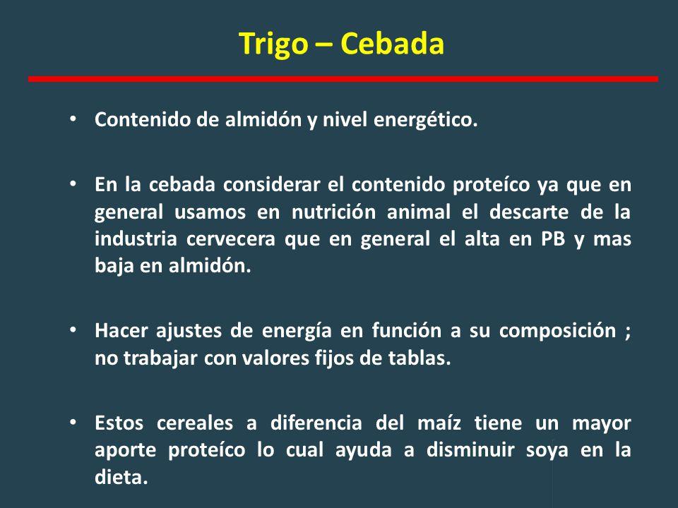 Trigo – Cebada Contenido de almidón y nivel energético.