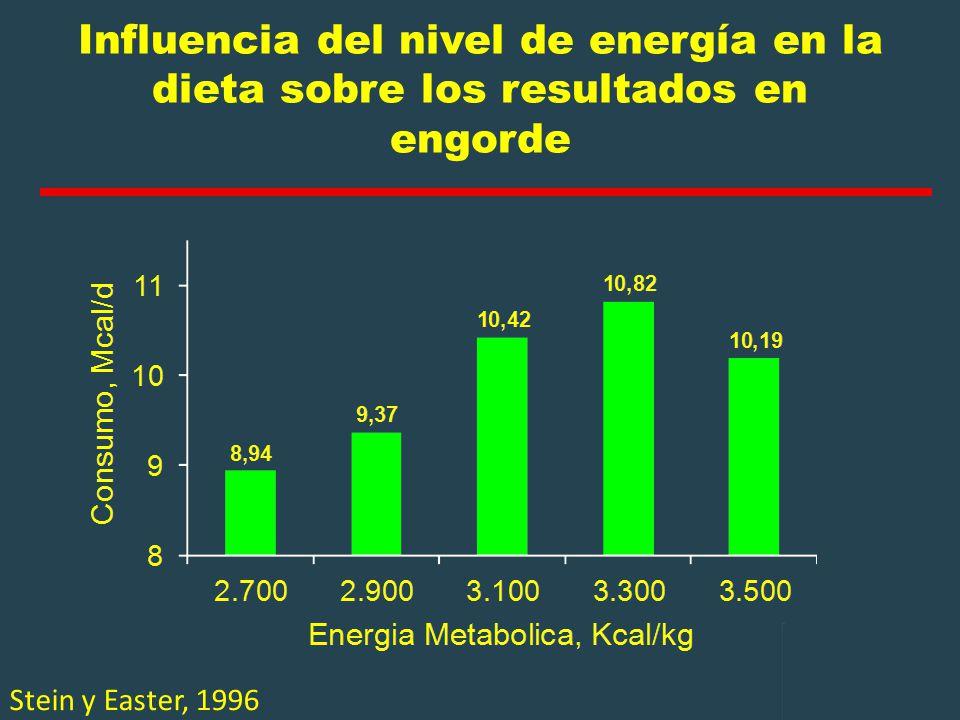Influencia del nivel de energía en la dieta sobre los resultados en engorde