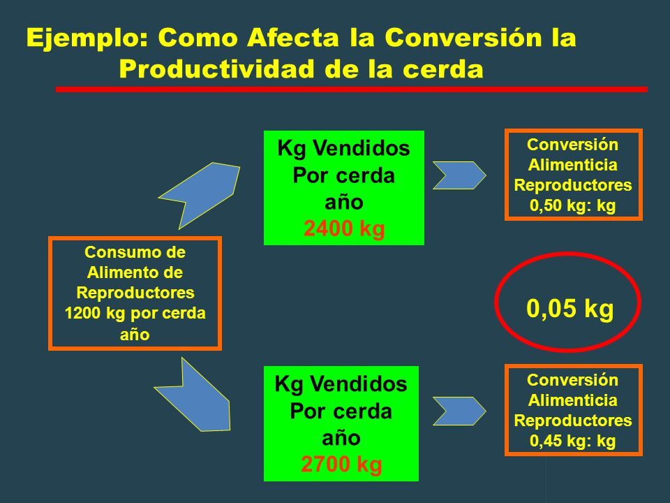 Ejemplo: Como Afecta la Conversión la Productividad de la cerda