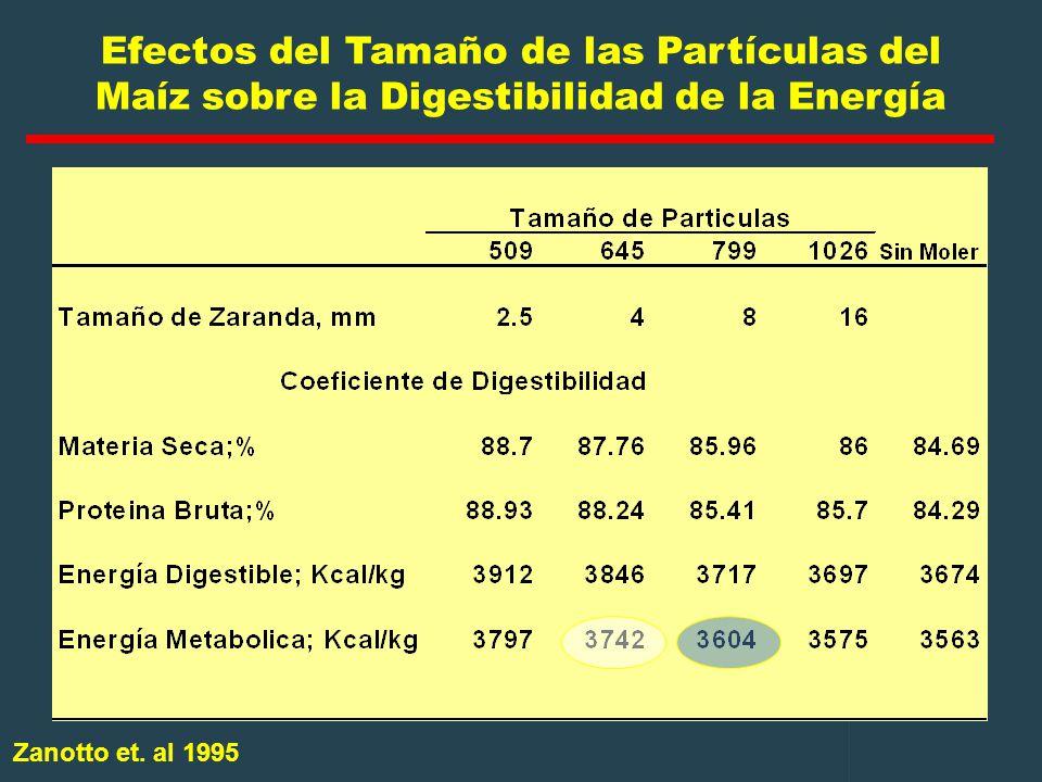 Efectos del Tamaño de las Partículas del Maíz sobre la Digestibilidad de la Energía