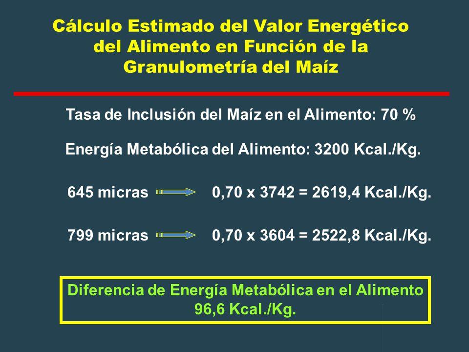 Diferencia de Energía Metabólica en el Alimento