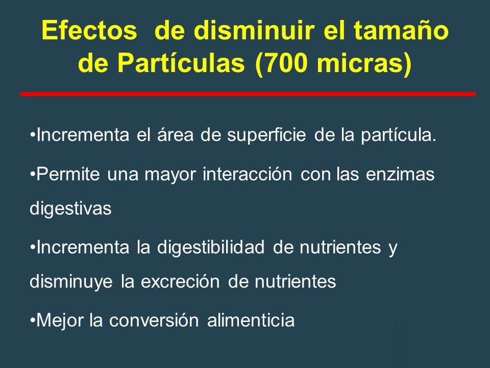 Efectos de disminuir el tamaño de Partículas (700 micras)