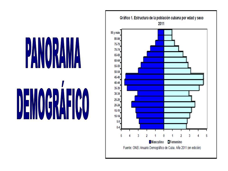 PANORAMA DEMOGRÁFICO