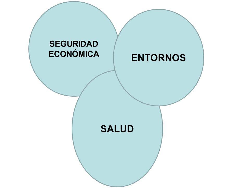 SEGURIDAD ECONÓMICA ENTORNOS SALUD