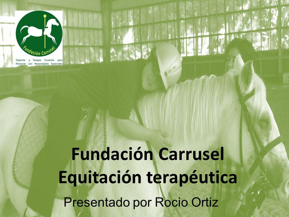 Fundación Carrusel Equitación Terapéutica