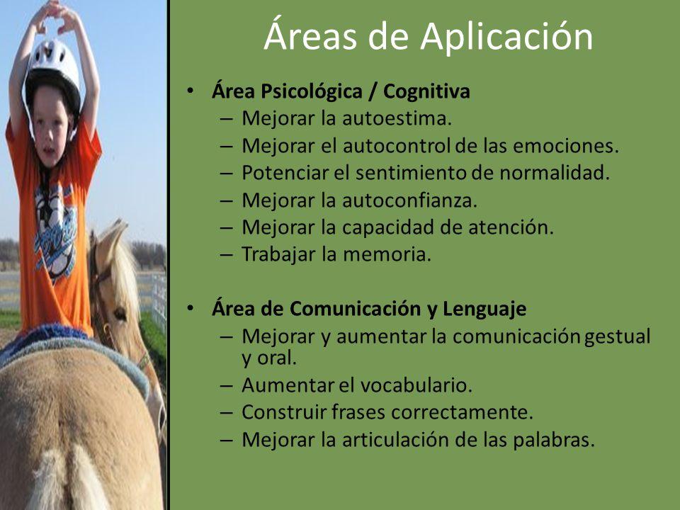 Áreas de Aplicación Área Psicológica / Cognitiva