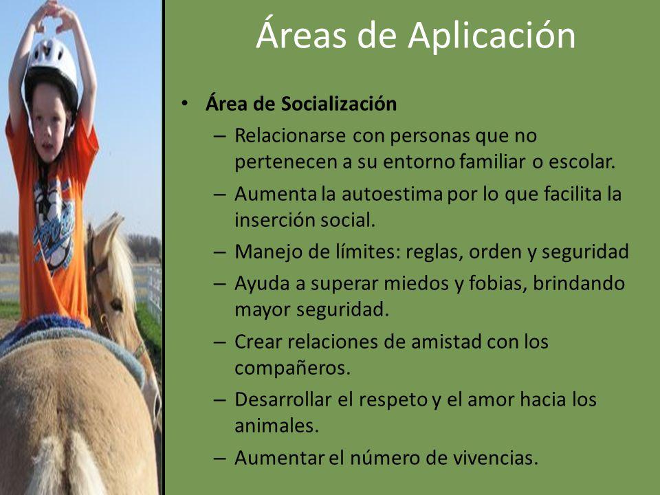 Áreas de Aplicación Área de Socialización