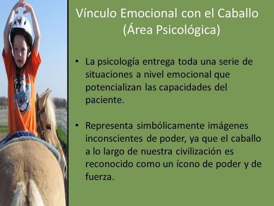 Vínculo Emocional con el Caballo (Área Psicológica)
